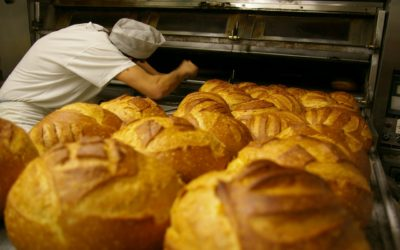 Création site internet boulanger
