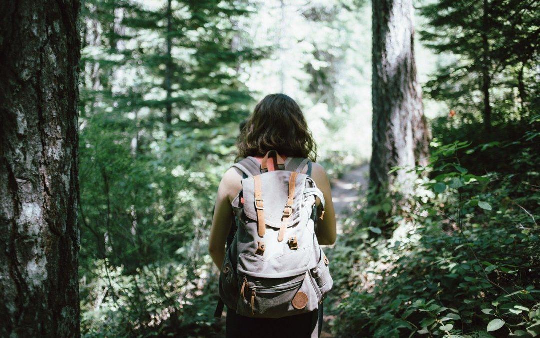 Comment être un voyageur éco-responsable